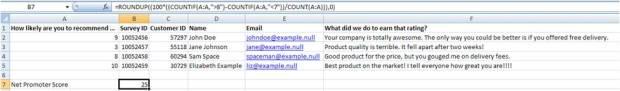 Net Promoter Score Excel Formula